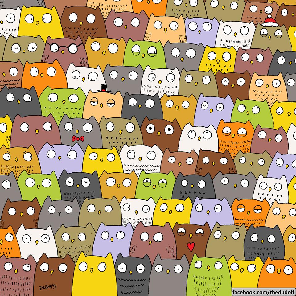 Où est le chat