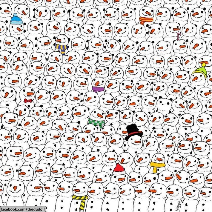 Où est le panda - illustration