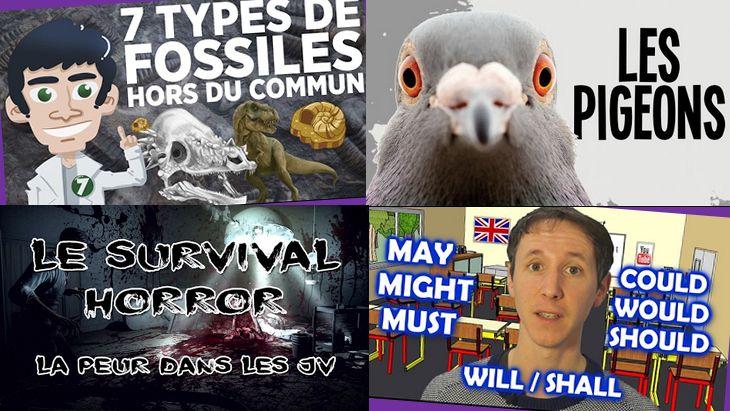 Apprendre avec YouTube #16 : les 6 vidéos de la semaine avec Doc Seven, Nota Bene…
