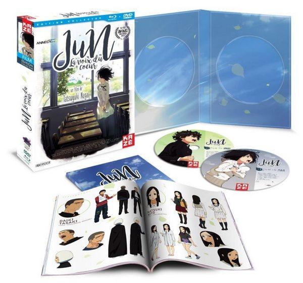 jun voix coeur dvd