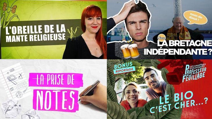 Apprendre avec YouTube #50 : Linguisticae, Hugo Décrypte, Les Bons Profs, Professeur Feuillage…