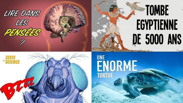 Apprendre avec YouTube #57 avec Nota Bene, Poisson Fécond, Zeste de Science…