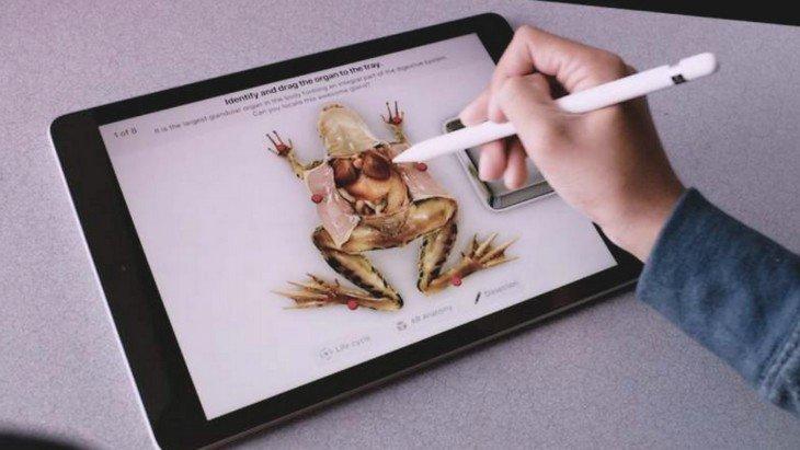 Le nouvel iPad va sauver plein de grenouilles !