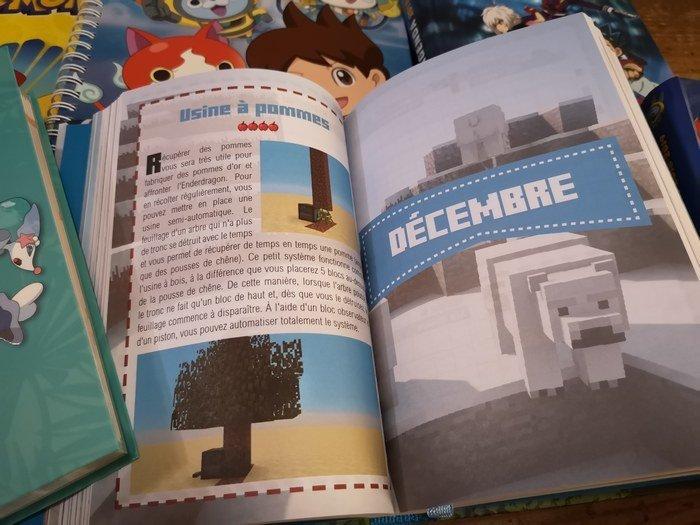 agenda Minecraft