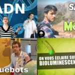 Apprendre avec YouTube #85 : Dirty Biology, Scienticfiz, Ichiban Japan, AstronoGeek