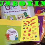 Unboxing de Lab'Oh! : la box pour les petits scientifiques ET artistes !