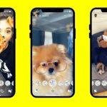 Après les chats, Snapchat lance des filtres pour les chiens !