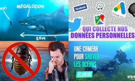Apprendre avec YouTube #136 : Poisson Fécond, Dr Nozman, Le Tatou, Photo Synthèse