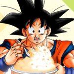 Les recettes légendaires de Dragon Ball : un livre de recette à la sauce manga !