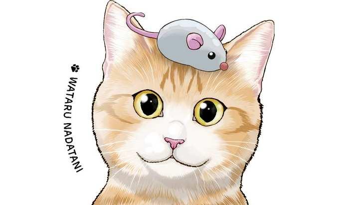 Sortie Manga : avec «Félin pour l'autre» (Vol.4), l'amour des chats n'a pas de limite !
