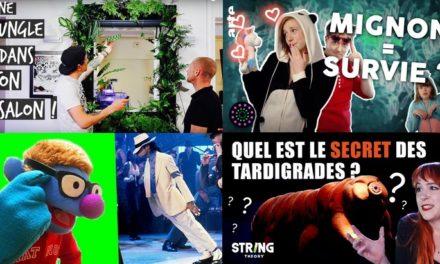 Apprendre avec YouTube #153 : L'antisèche, Le Vortex, Scienticfiz, Toopet, Norbert explique nous…