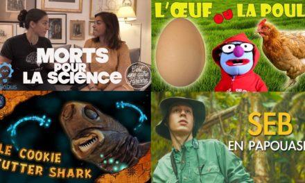 Apprendre avec YouTube #160 : Seb la Frite, Scilabus, C'est une autre histoire, Melvak, Linguisticae…