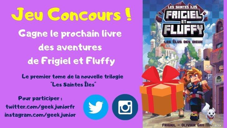 Jeu concours : gagne le nouveau roman d'aventure de Frigiel et Fluffy !