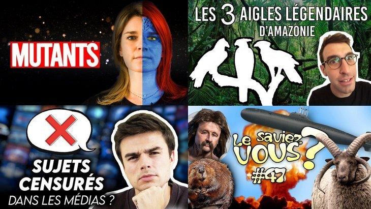 Apprendre avec YouTube #195 : Max Bird, String Theory, Hugo Décrypte, Les Bons Profs…