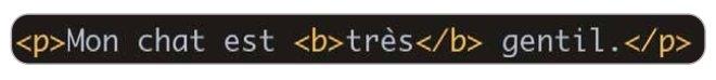 anatomie élément html