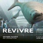 REVIVRE  : le musée des animaux disparus en réalité augmentée