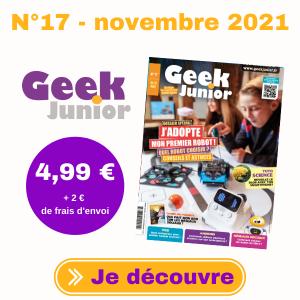 Geek Junior n°17